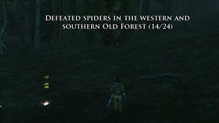Old Forest 1.jpg